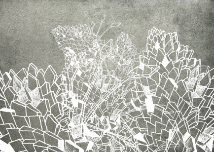 DRAWING - NEW galerie 0